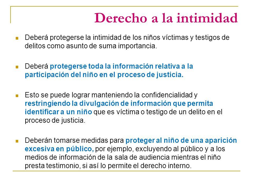 Derecho a la intimidad Deberá protegerse la intimidad de los niños víctimas y testigos de delitos como asunto de suma importancia.
