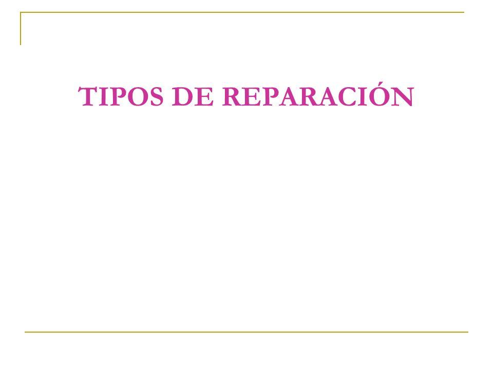 TIPOS DE REPARACIÓN