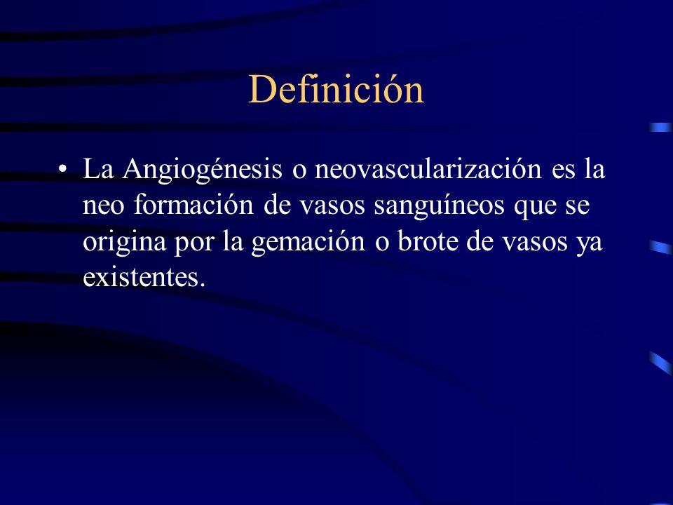 Definición La Angiogénesis o neovascularización es la neo formación de vasos sanguíneos que se origina por la gemación o brote de vasos ya existentes.