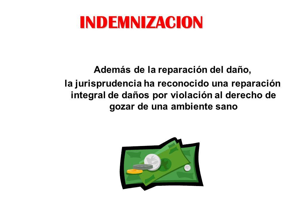 INDEMNIZACION Además de la reparación del daño, la jurisprudencia ha reconocido una reparación integral de daños por violación al derecho de gozar de