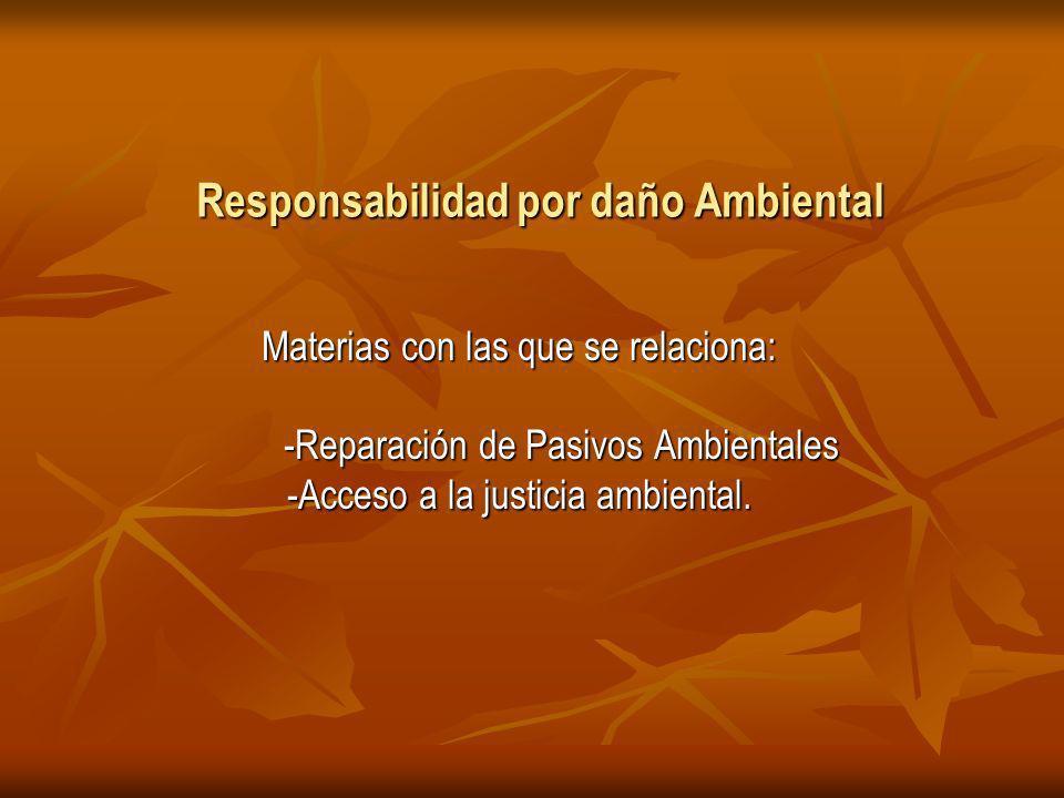 Responsabilidad por daño Ambiental Materias con las que se relaciona: -Reparación de Pasivos Ambientales -Reparación de Pasivos Ambientales -Acceso a la justicia ambiental.