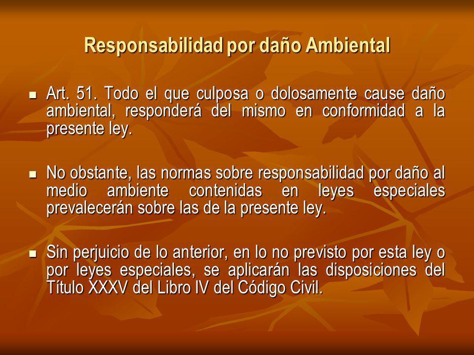 Responsabilidad por daño Ambiental Art.51.