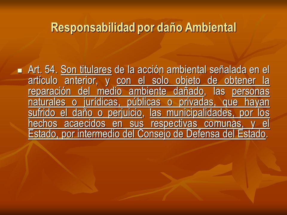 Responsabilidad por daño Ambiental Art.54.