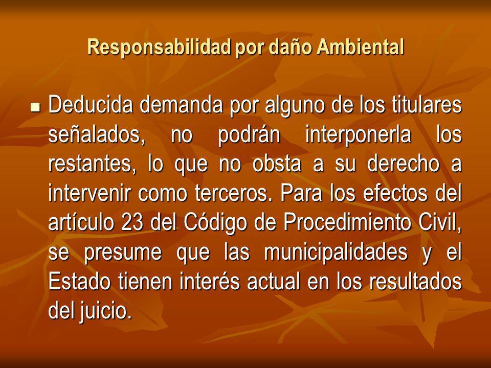 Responsabilidad por daño Ambiental Deducida demanda por alguno de los titulares señalados, no podrán interponerla los restantes, lo que no obsta a su derecho a intervenir como terceros.