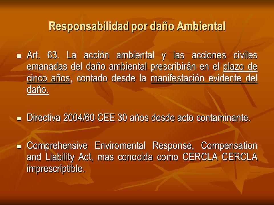 Responsabilidad por daño Ambiental Art.63.