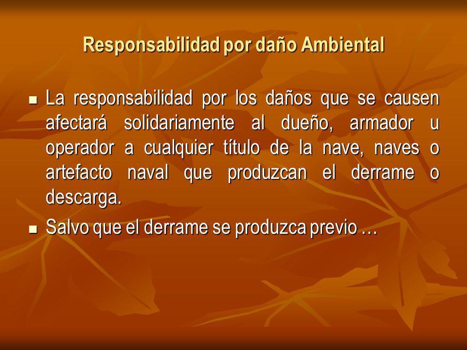 Responsabilidad por daño Ambiental La responsabilidad por los daños que se causen afectará solidariamente al dueño, armador u operador a cualquier título de la nave, naves o artefacto naval que produzcan el derrame o descarga.