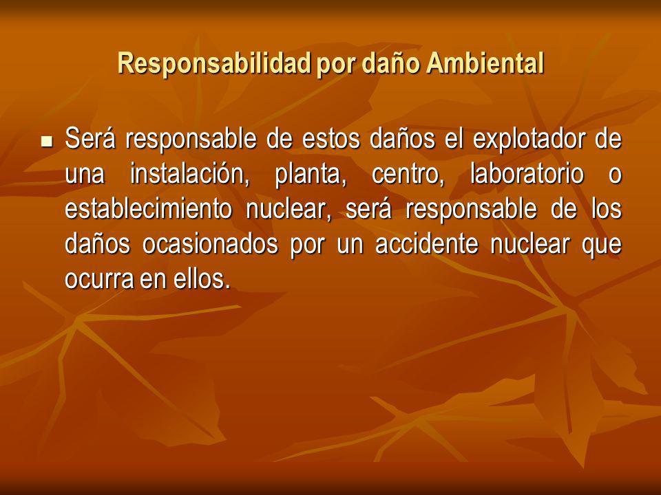 Responsabilidad por daño Ambiental Será responsable de estos daños el explotador de una instalación, planta, centro, laboratorio o establecimiento nuclear, será responsable de los daños ocasionados por un accidente nuclear que ocurra en ellos.