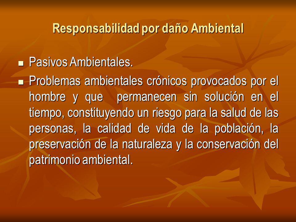 Responsabilidad por daño Ambiental Pasivos Ambientales.