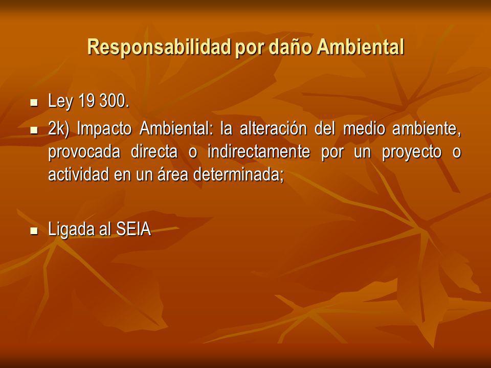 Responsabilidad por daño Ambiental Ley 19 300.Ley 19 300.