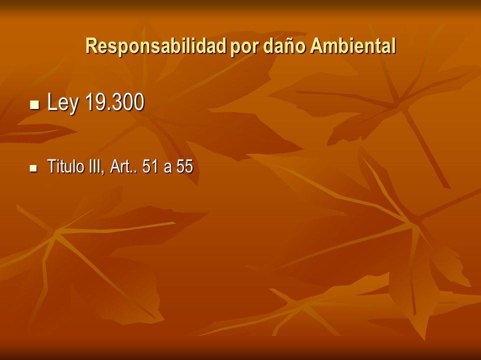 Responsabilidad por daño Ambiental Ley 19.300 Ley 19.300 Titulo III, Art..