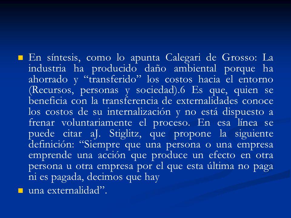 En síntesis, como lo apunta Calegari de Grosso: La industria ha producido daño ambiental porque ha ahorrado y transferido los costos hacia el entorno
