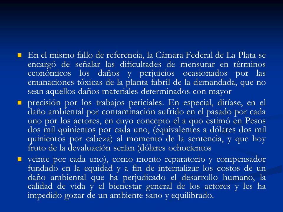 En el mismo fallo de referencia, la Cámara Federal de La Plata se encargó de señalar las dificultades de mensurar en términos económicos los daños y p