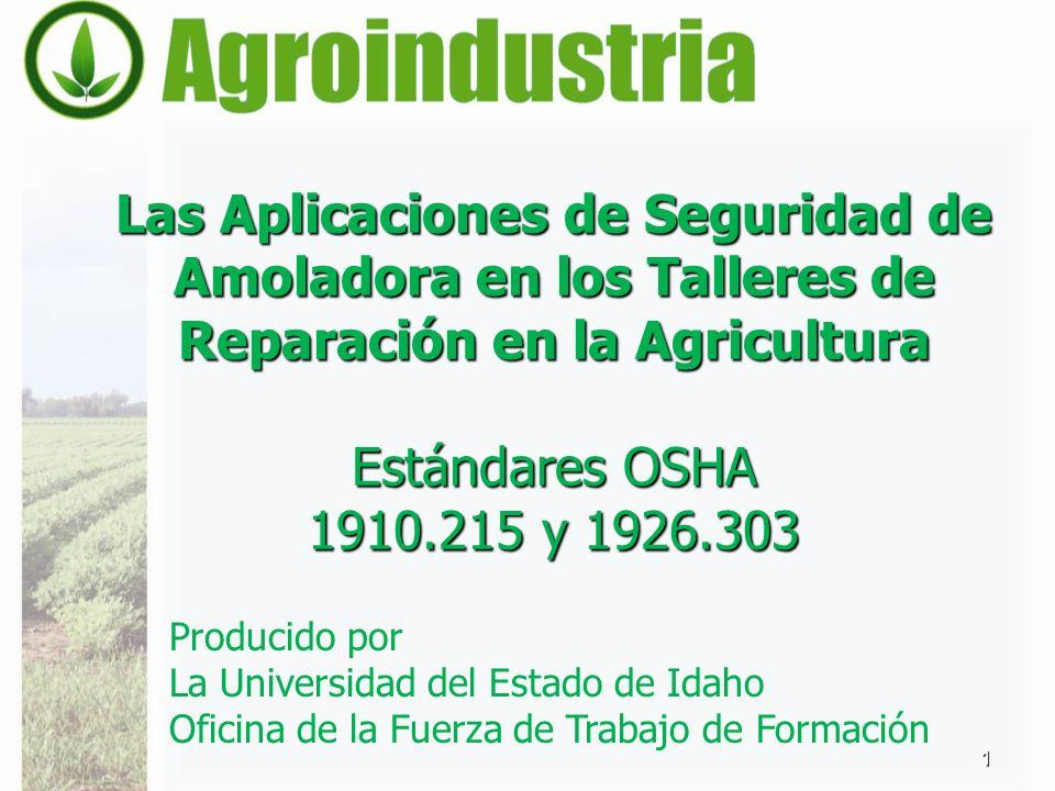 Las Aplicaciones de Seguridad de Amoladora en los Talleres de Reparación en la Agricultura Estándares OSHA 1910.215 y 1926.303 1 Producido por La Univ