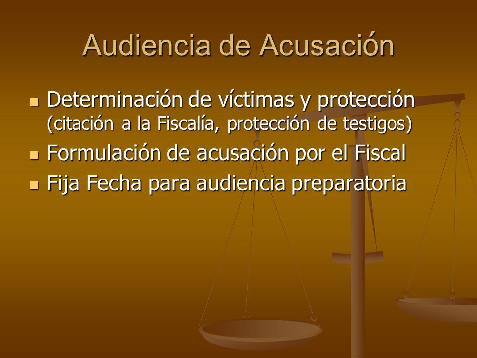 Audiencia de Acusaci ó n Determinación de víctimas y protección (citación a la Fiscalía, protección de testigos) Determinación de víctimas y protecció