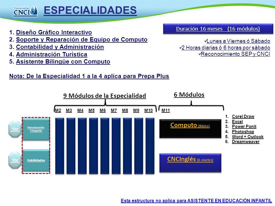 ESPECIALIDADES Duración 16 meses (16 módulos) 1.Corel Draw 2.Excel 3.Power Ponit 4.Photoshop 5.Word + Outlook 6.Dreamweaver 1.Diseño Gráfico Interacti
