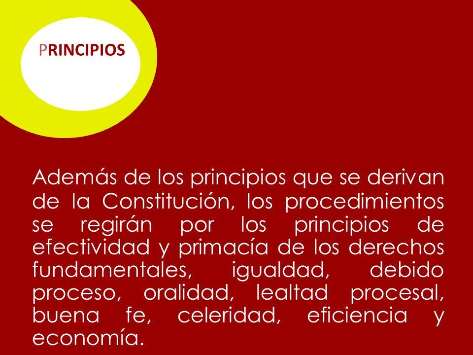 PRINCIPIOS Además de los principios que se derivan de la Constitución, los procedimientos se regirán por los principios de efectividad y primacía de los derechos fundamentales, igualdad, debido proceso, oralidad, lealtad procesal, buena fe, celeridad, eficiencia y economía.