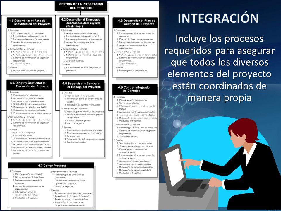 Incluye los procesos requeridos para asegurar que todos los diversos elementos del proyecto están coordinados de manera propia