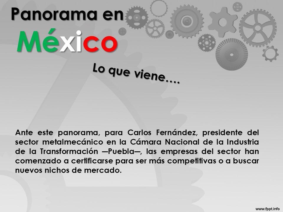 Panorama en México Ante este panorama, para Carlos Fernández, presidente del sector metalmecánico en la Cámara Nacional de la Industria de la Transformación Puebla, las empresas del sector han comenzado a certificarse para ser más competitivas o a buscar nuevos nichos de mercado.