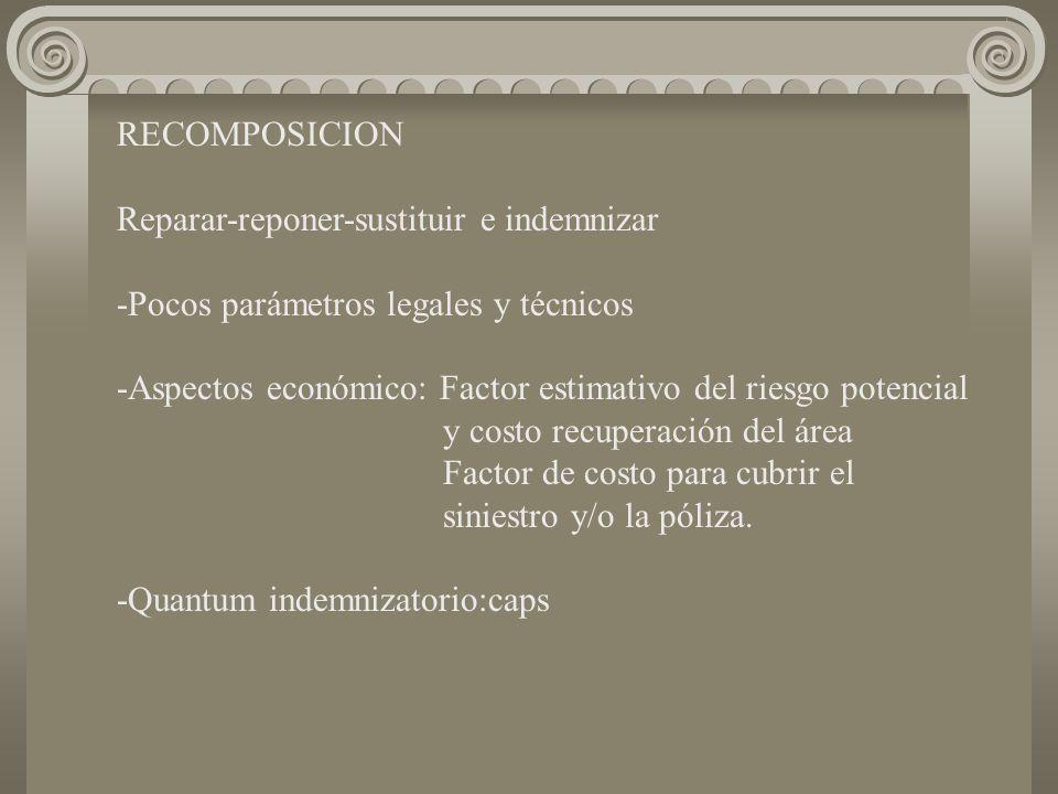 RECOMPOSICION Reparar-reponer-sustituir e indemnizar -Pocos parámetros legales y técnicos -Aspectos económico: Factor estimativo del riesgo potencial y costo recuperación del área Factor de costo para cubrir el siniestro y/o la póliza.