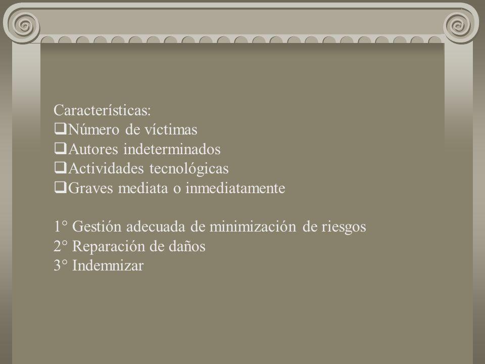 Características: Número de víctimas Autores indeterminados Actividades tecnológicas Graves mediata o inmediatamente 1° Gestión adecuada de minimización de riesgos 2° Reparación de daños 3° Indemnizar