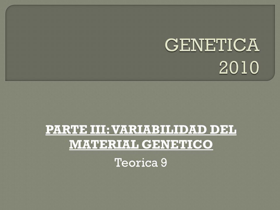 MECANISMO DE CORRECCIÓN DE PRUEBAS (PROOFREADING) REALIZADO POR LA DNA POLIMERASA SISTEMAS DE REPARACION: LA TASA DE ERROR OBSERVADA ES 1000 VECES MENOR: de 10 -4 -10 - 5 a 10 -6 - 10 - 8 LA POLIMERASA REPARA SUS ERRORES.