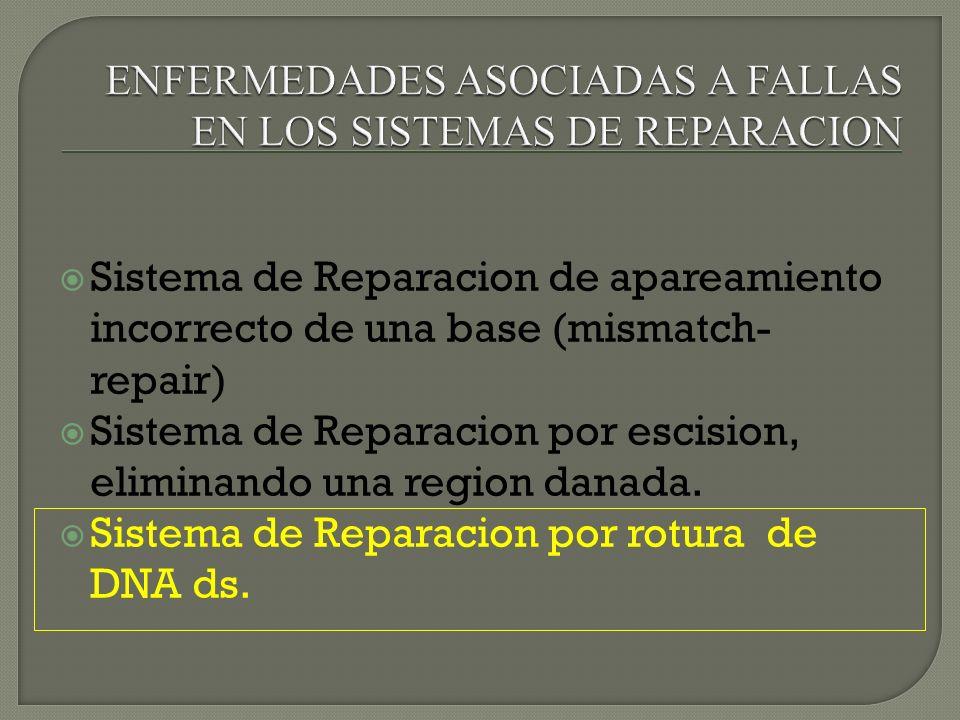 Sistema de Reparacion de apareamiento incorrecto de una base (mismatch- repair) Sistema de Reparacion por escision, eliminando una region danada. Sist