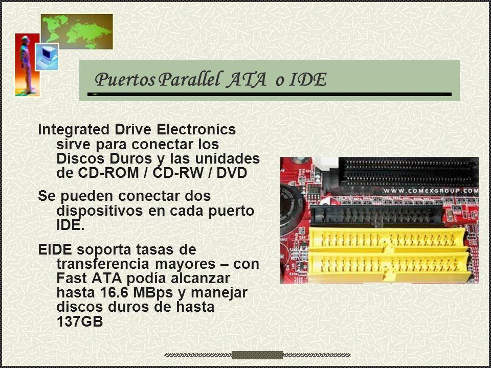 Puertos Parallel ATA o IDE Integrated Drive Electronics sirve para conectar los Discos Duros y las unidades de CD-ROM / CD-RW / DVD Se pueden conectar