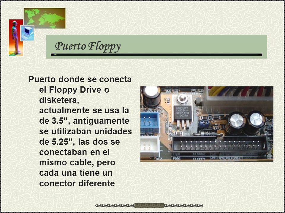 Puerto Floppy Puerto donde se conecta el Floppy Drive o disketera, actualmente se usa la de 3.5, antiguamente se utilizaban unidades de 5.25, las dos