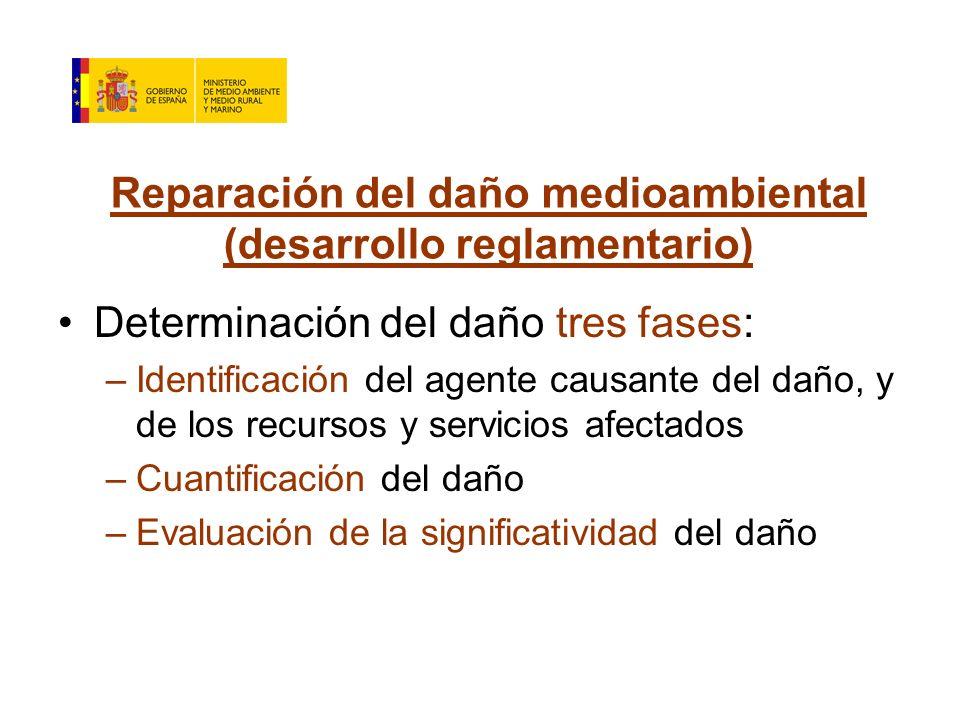 Reparación del daño medioambiental (desarrollo reglamentario) Determinación del daño tres fases: –Identificación del agente causante del daño, y de los recursos y servicios afectados –Cuantificación del daño –Evaluación de la significatividad del daño
