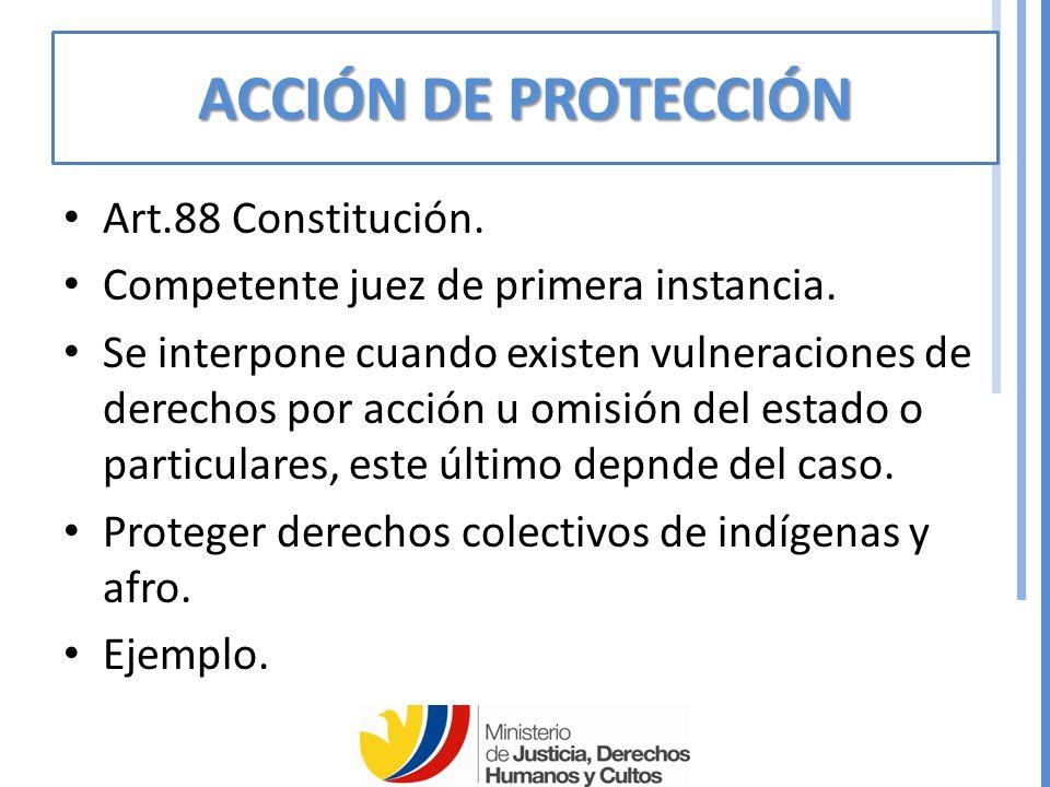 ACCIÓN DE PROTECCIÓN Art.88 Constitución.Competente juez de primera instancia.