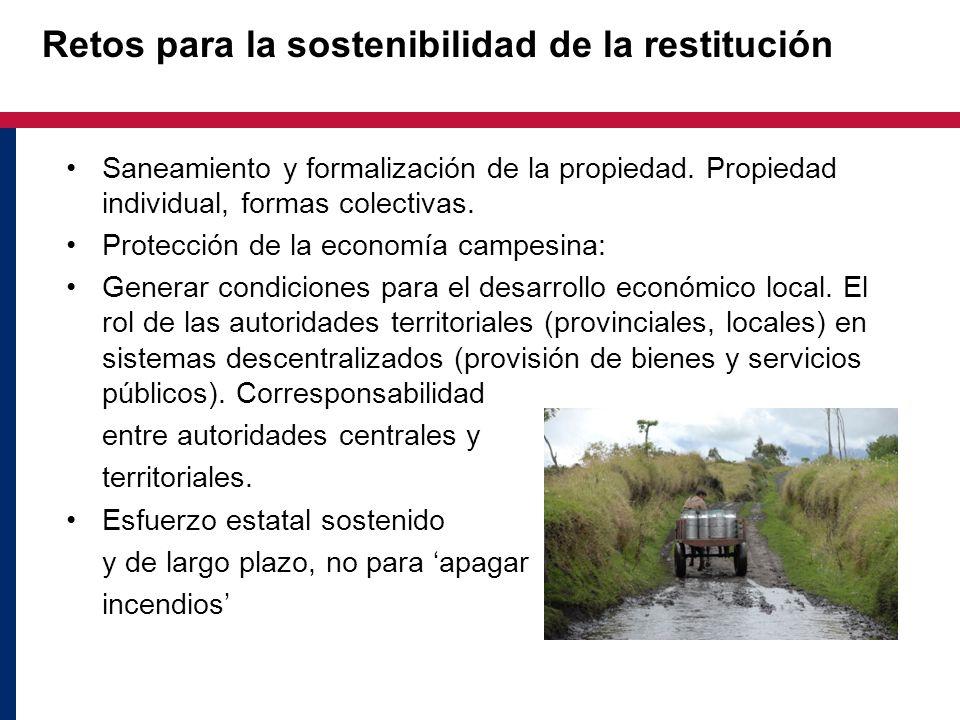 Retos para la sostenibilidad de la restitución Saneamiento y formalización de la propiedad. Propiedad individual, formas colectivas. Protección de la