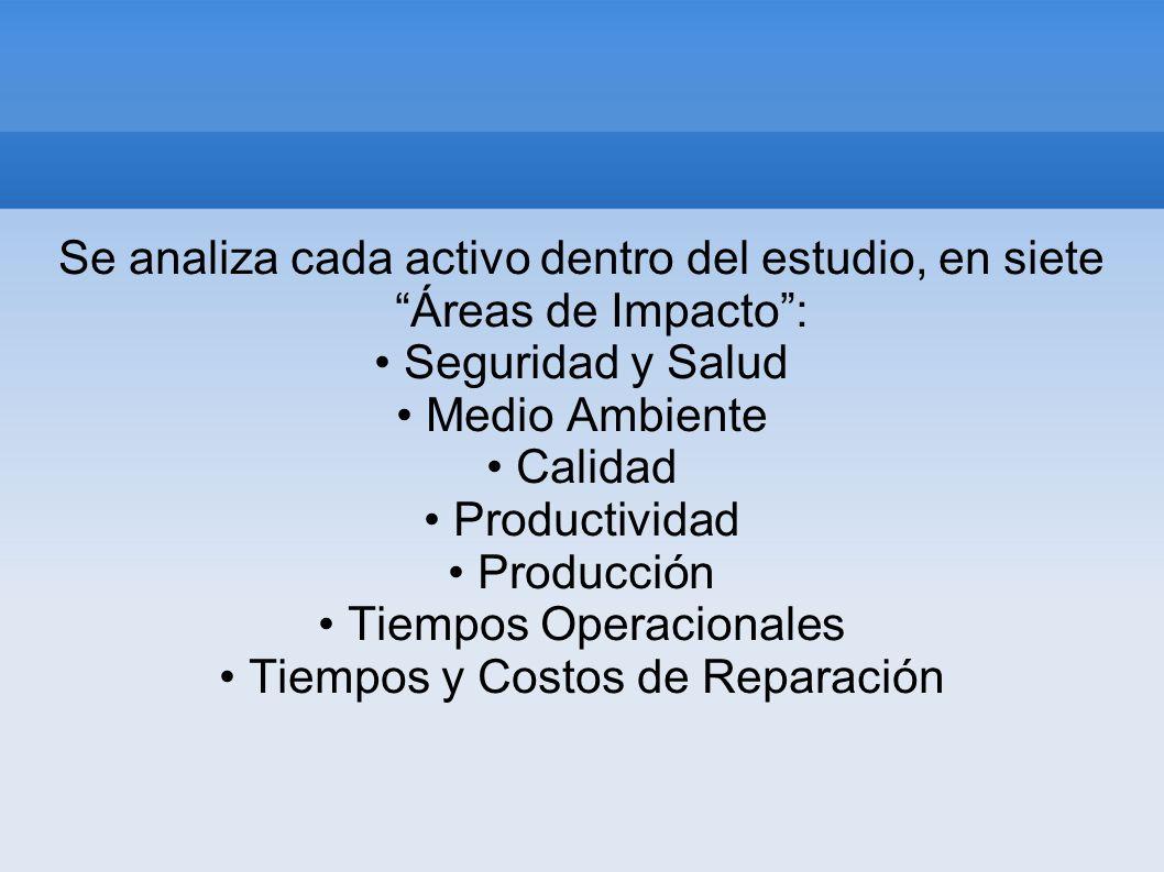 Se analiza cada activo dentro del estudio, en siete Áreas de Impacto: Seguridad y Salud Medio Ambiente Calidad Productividad Producción Tiempos Operac