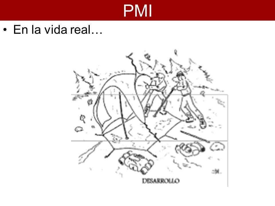 En la vida real… PMI