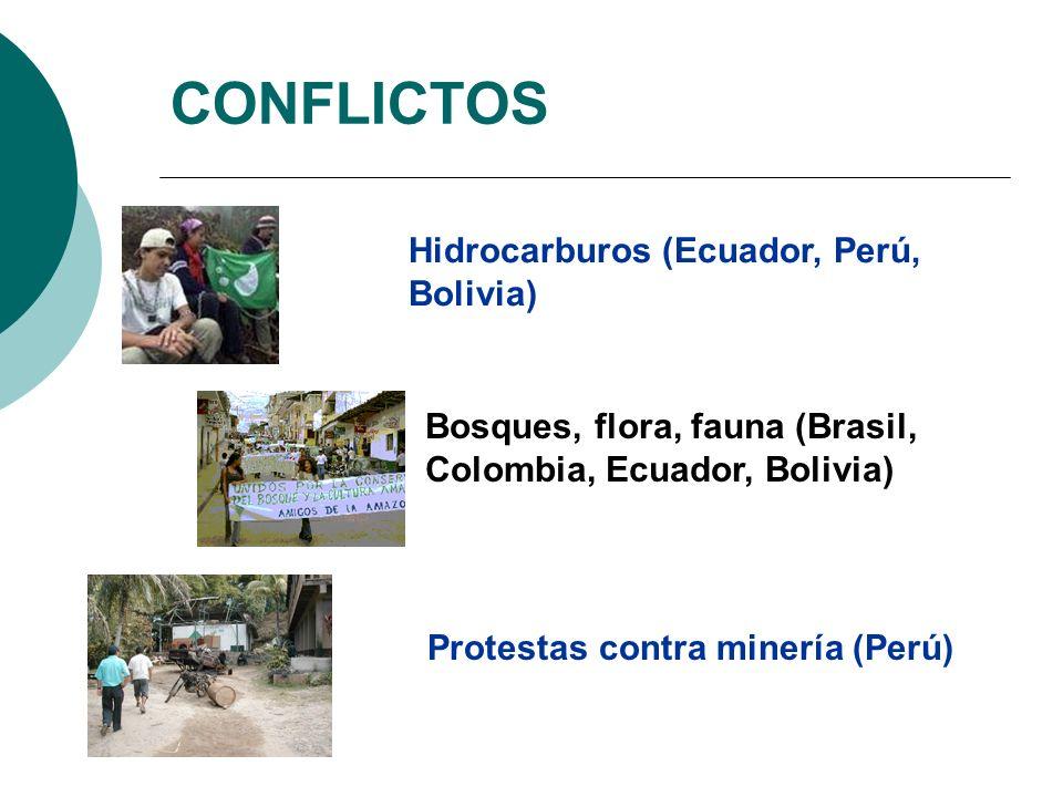 CONFLICTOS Hidrocarburos (Ecuador, Perú, Bolivia) Bosques, flora, fauna (Brasil, Colombia, Ecuador, Bolivia) Protestas contra minería (Perú)