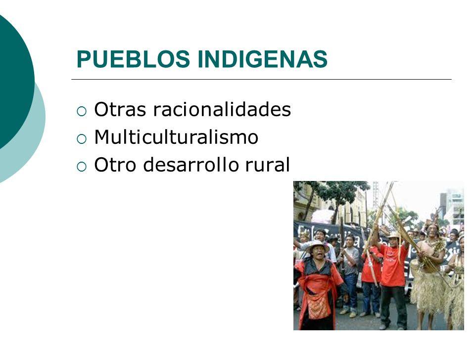 PUEBLOS INDIGENAS Otras racionalidades Multiculturalismo Otro desarrollo rural