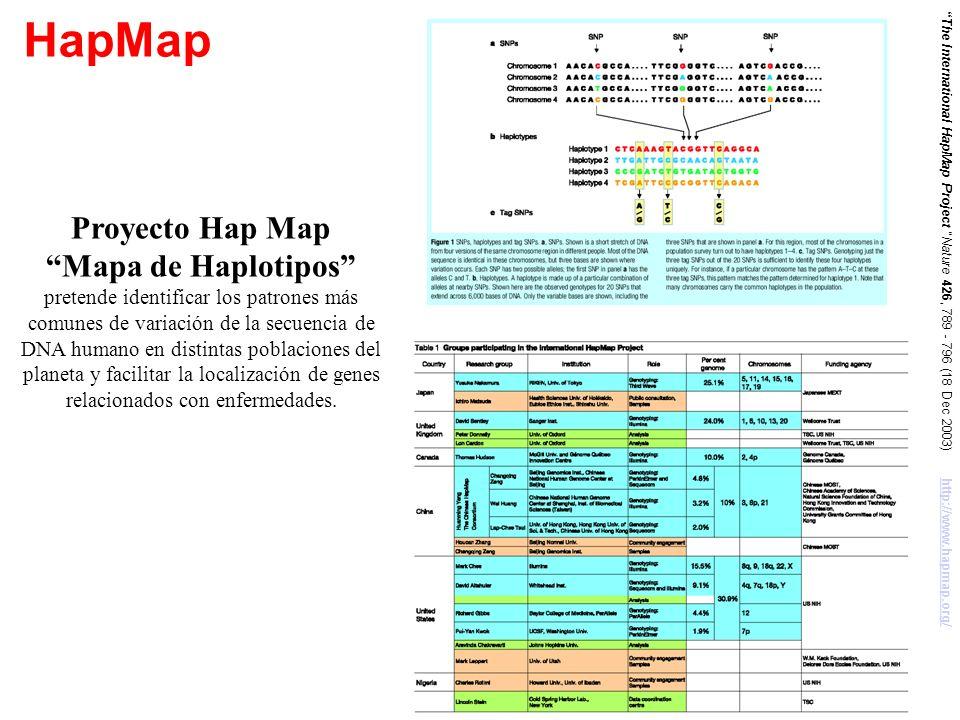 HapMap The International HapMap Project Nature 426, 789 - 796 (18 Dec 2003) http://www.hapmap.org/http://www.hapmap.org/ Proyecto Hap Map Mapa de Hapl