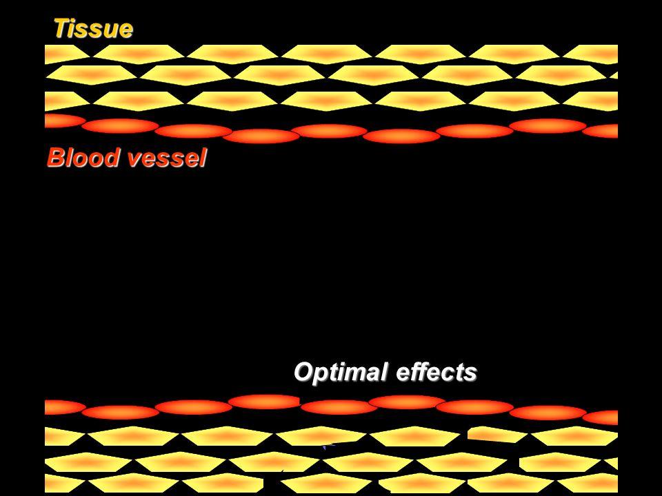 Drug Pathology Targeting vector Enhanced affinity Tissue Blood vessel Effective delivery Optimal effects Optimal effects