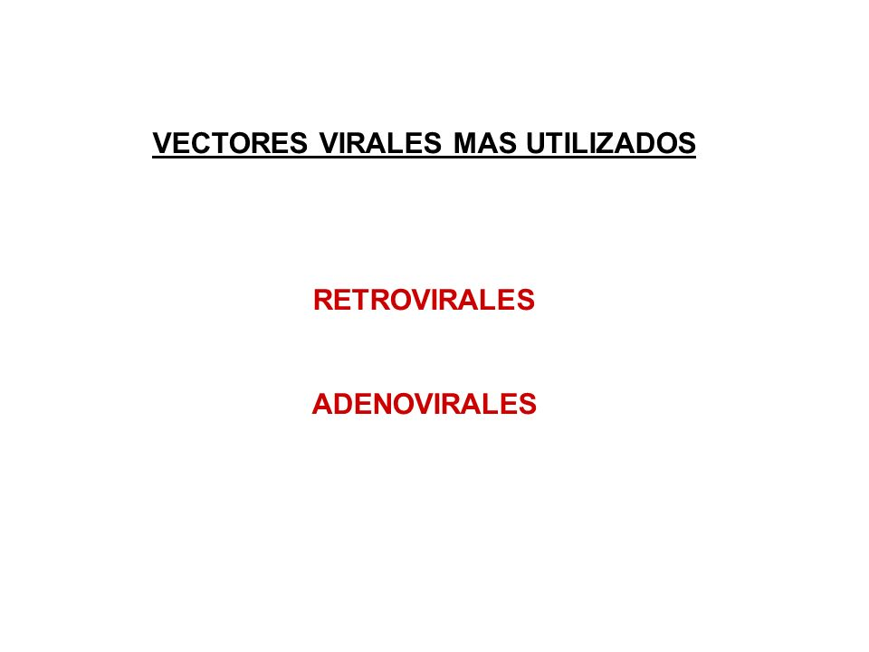 VECTORES VIRALES MAS UTILIZADOS RETROVIRALES ADENOVIRALES