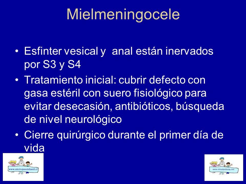 Mielmeningocele Esfinter vesical y anal están inervados por S3 y S4 Tratamiento inicial: cubrir defecto con gasa estéril con suero fisiológico para ev