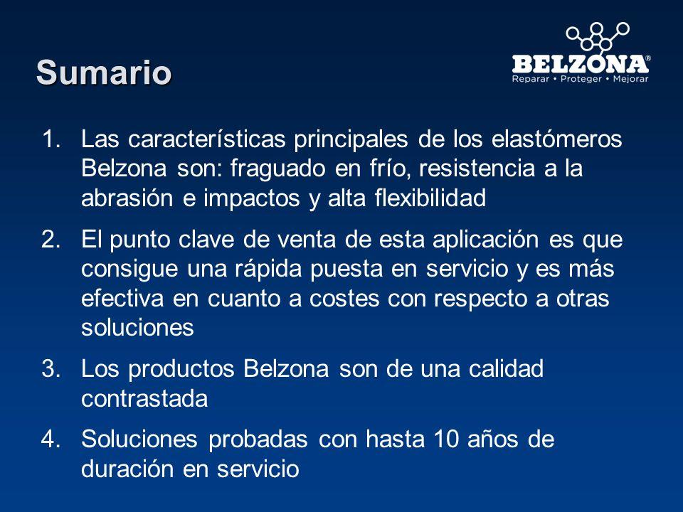 Sumario 1. 1.Las características principales de los elastómeros Belzona son: fraguado en frío, resistencia a la abrasión e impactos y alta flexibilida