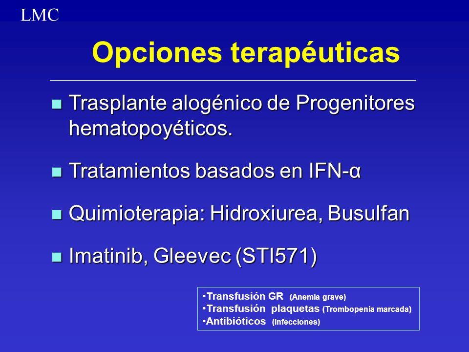 Opciones terapéuticas n Trasplante alogénico de Progenitores hematopoyéticos. n Tratamientos basados en IFN-α n Quimioterapia: Hidroxiurea, Busulfan n