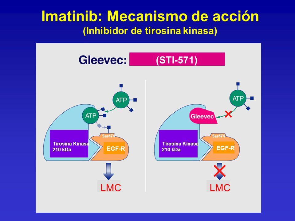 Tirosina Kinasa 210 kDa Tirosina Kinasa 210 kDa (STI-571) LMC EGF-R Ser474 Imatinib: Mecanismo de acción (Inhibidor de tirosina kinasa)
