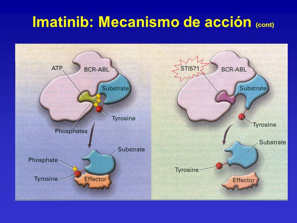 Imatinib: Mecanismo de acción (cont)