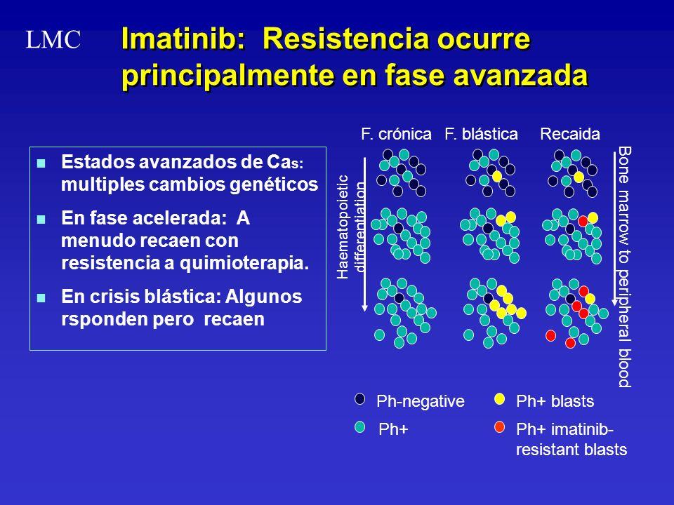 Imatinib: Resistencia ocurre principalmente en fase avanzada n n Estados avanzados de Ca s: multiples cambios genéticos n n En fase acelerada: A menud