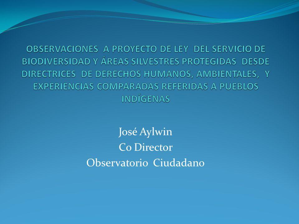José Aylwin Co Director Observatorio Ciudadano