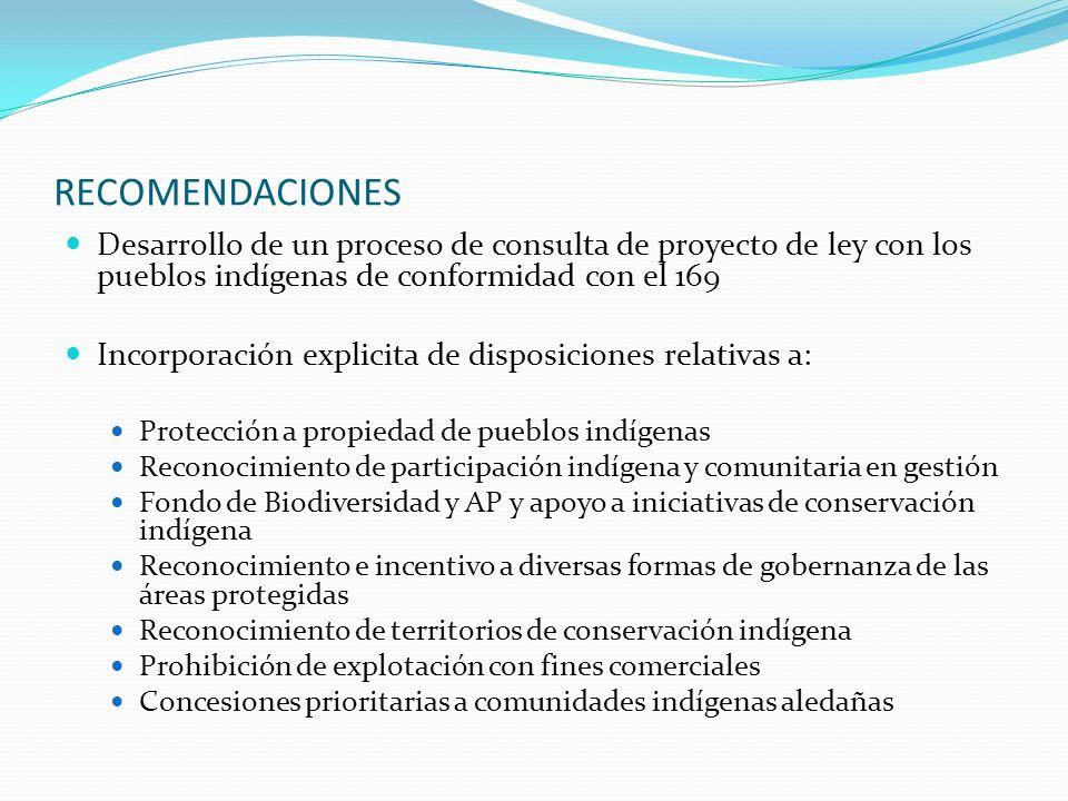 RECOMENDACIONES Desarrollo de un proceso de consulta de proyecto de ley con los pueblos indígenas de conformidad con el 169 Incorporación explicita de