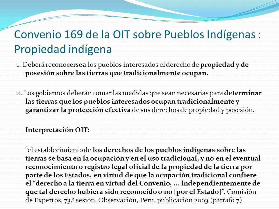 Convenio 169 de la OIT sobre Pueblos Indígenas : Propiedad indígena 1. Deberá reconocerse a los pueblos interesados el derecho de propiedad y de poses