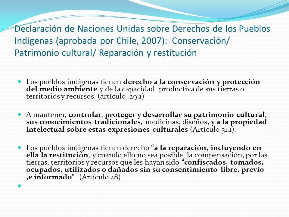 Declaración de Naciones Unidas sobre Derechos de los Pueblos Indígenas (aprobada por Chile, 2007): Conservación/ Patrimonio cultural/ Reparación y res