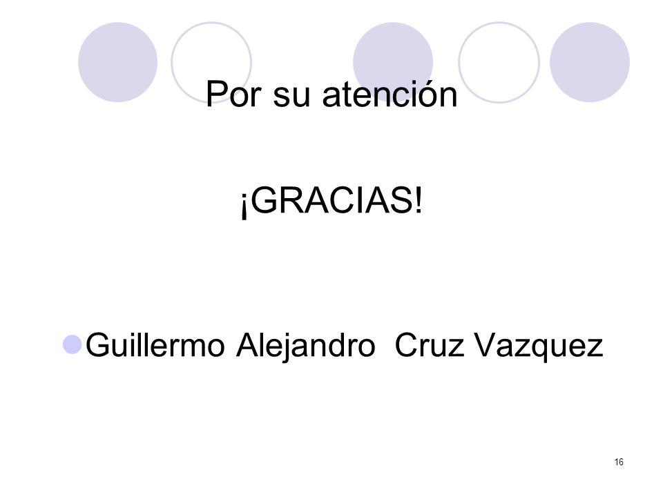 16 Por su atención ¡GRACIAS! Guillermo Alejandro Cruz Vazquez