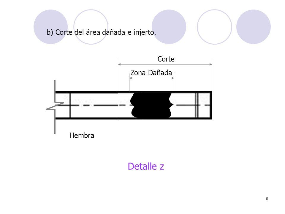 8 Zona Dañada Detalle z b) Corte del área dañada e injerto. Corte Hembra